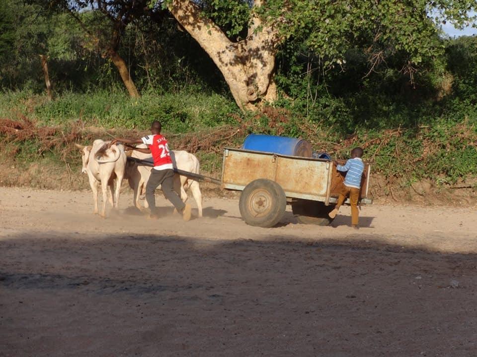ICYE Kenia